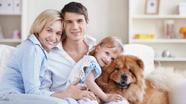 Wills & Trusts dog-young-family Direct Wills Lowestoft